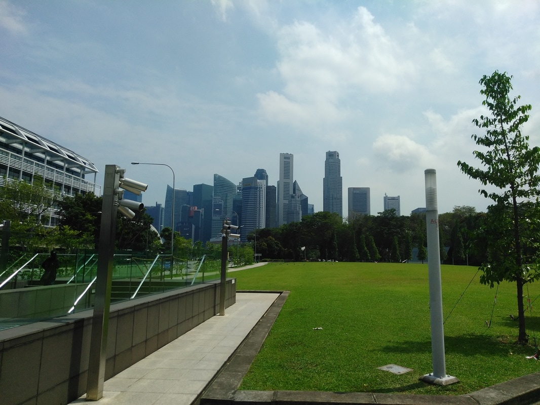 Picture of the skyline of Singapore's downtown area.